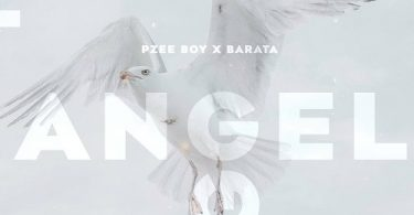 Barata x Pzee Boy - Angel (Original Mix)