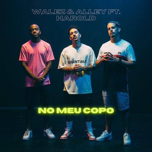 Walez & Alley - No Meu Copo (feat. Harold)